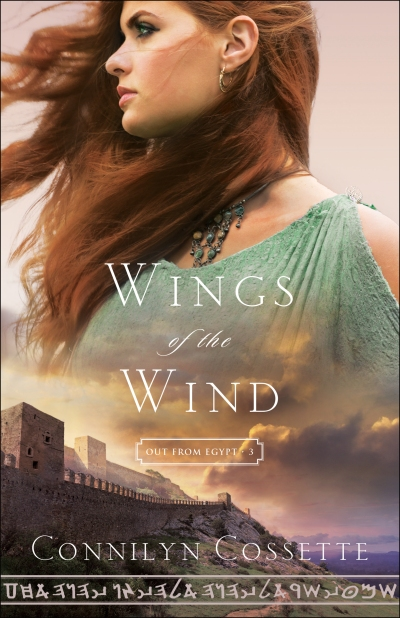book cover Wings of the Wind