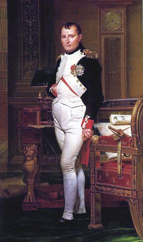 Napoleon by the artist David
